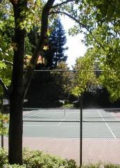Tennis Court_vertical-2
